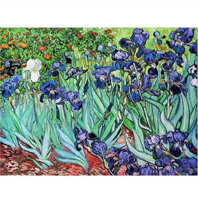 DToys-66916-VG03 Jigsaw Puzzle - 1000 Pieces - Van Gogh : Iris
