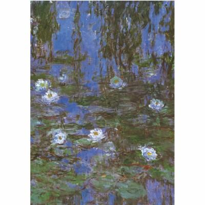 DToys-67548-CM06-(69641) Jigsaw Puzzle - 1000 Pieces - Monet : Water Lilies
