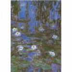 DToys-67548-CM06 Jigsaw Puzzle - 1000 Pieces - Monet : Water Lilies