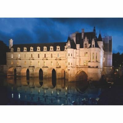 DToys-69535 Jigsaw Puzzle - 1000 Pieces - Castles of France : Château de Chenonceau
