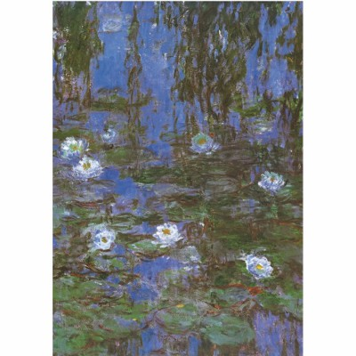 DToys-69641 Jigsaw Puzzle - 1000 Pieces - Monet : Water Lilies