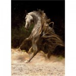 DToys-70395 Jigsaw Puzzle - 1000 Pieces - Horses : Horse in the Dust