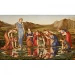 Puzzle  Dtoys-72733-BU01-(72733) Edward Burne-Jones: The Mirror of Venus, 1875