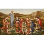 Puzzle  Dtoys-72733-BU01 Edward Burne-Jones: The Mirror of Venus, 1875