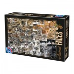 Puzzle  Dtoys-74331-AF02 Collage - Cats