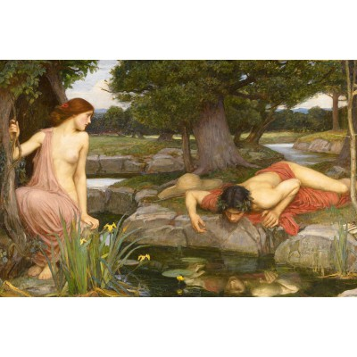 Puzzle Dtoys-75048 Waterhouse John William: Echo and Narcissus