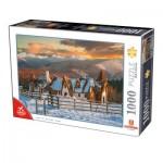 Puzzle  Dtoys-76052 Romania