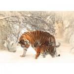 Puzzle   Tigers