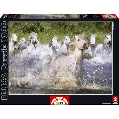 Puzzle Educa-15988 Camargue horses