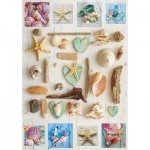 Puzzle  Educa-17658 Shell Collage