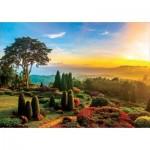 Puzzle  Educa-17968 Beautiful Garden