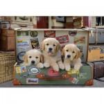Puzzle   Puppies in the Luggage