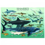 Eurographics-6000-0079 Jigsaw Puzzle - 1000 Pieces - Sharks