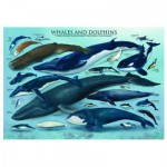 Eurographics-6000-0082 Jigsaw Puzzle - 1000 Pieces - Dolphins and Whales