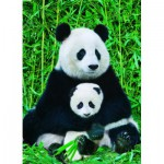 Puzzle  Eurographics-6000-0173 The Panda family