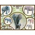 Puzzle  Eurographics-6000-0241 The elephant