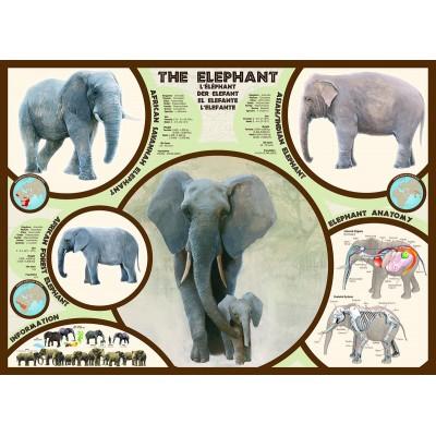 Puzzle Eurographics-6000-0241 The elephant