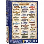 Puzzle  Eurographics-6000-0311 Salmon & Trout