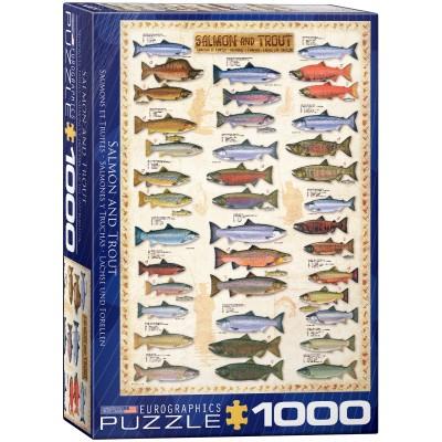 Puzzle Eurographics-6000-0311