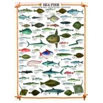 Puzzle  Eurographics-6000-0313 The fishes