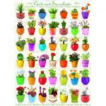 Puzzle  Eurographics-6000-0654 Cactus & Succulents