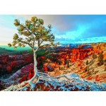Puzzle  Eurographics-6000-0692 Winter Sunrise
