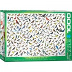 Puzzle  Eurographics-6000-0821 The World of Birds