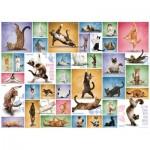 Puzzle  Eurographics-6000-0953 Yoga Cats