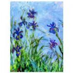 Puzzle  Eurographics-6000-2034 Claude Monet: Irises (Detail)