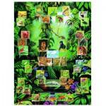 Puzzle  Eurographics-6000-2790