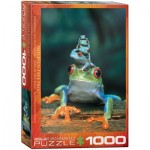 Puzzle  Eurographics-6000-3004 Red-Eyed Tree Frog
