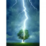 Puzzle  Eurographics-6000-4570 Lightning striking a tree
