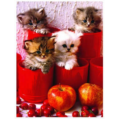 Puzzle Eurographics-6000-4674 Kitten in Pot