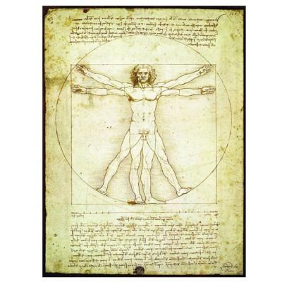 Puzzle Eurographics-6000-5098 Leonard de Vinci - Vitruvian Man