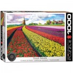 Puzzle  Eurographics-6000-5326 Tulip Fields Netherlands