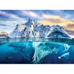 Puzzle  Eurographics-6000-5539 Save our Panet Collection - Arctic