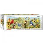 Puzzle  Eurographics-6010-5338 Garden Birds