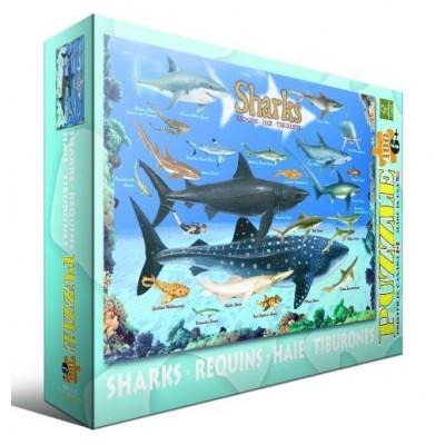 Puzzle Eurographics-6100-0079 Sharks