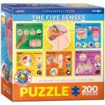 Puzzle  Eurographics-6200-0305 The Five Senses
