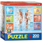 Puzzle  Eurographics-6200-1000 The Human Body