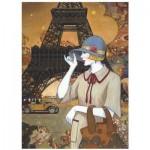 Puzzle  Eurographics-8000-0517