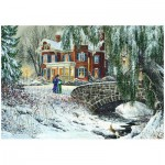 Puzzle  Eurographics-8000-0611 Douglas R. Laird: Winter Lace