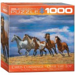 Puzzle  Eurographics-8000-0709 Chris Cummings - Over the Top