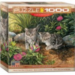 Puzzle  Eurographics-8000-0796 Double Trouble