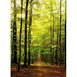 Puzzle  Eurographics-8000-3846 Forest Path