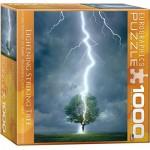 Puzzle  Eurographics-8000-4570 Lightning Striking Tree