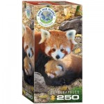 Puzzle  Eurographics-8251-5557 Save the Planet - Red Pandas