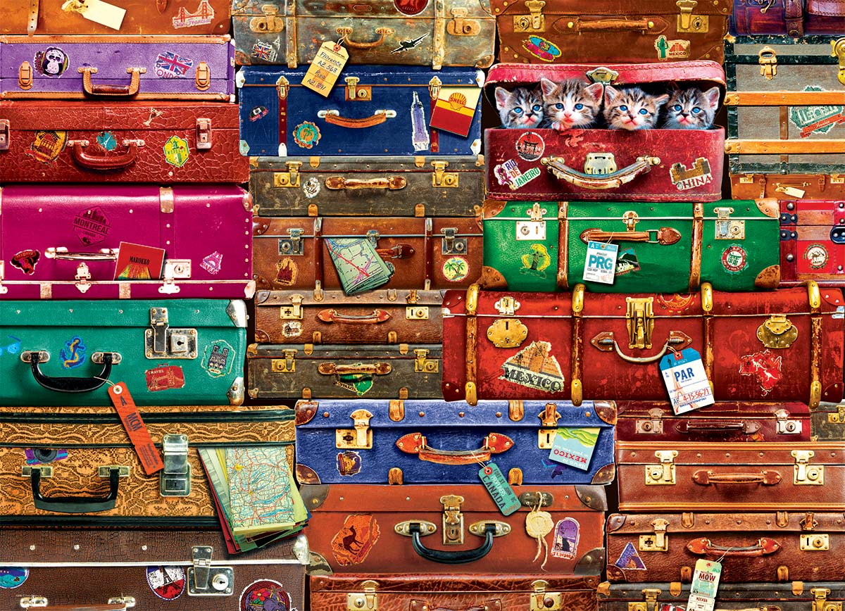 Travel Suitcases 1000 piece jigsaw puzzle