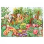 Puzzle   The Flower Show - Desert Plants