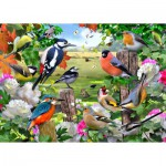 Puzzle  Jumbo-11025 Birds for all Seasons